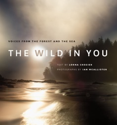 wild_in_you